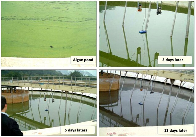 ultrasonic-algae-controller-installation-site2-2