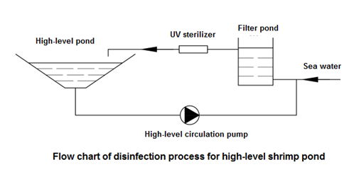 Process diagram of Medium pressure UV disinfection system for Litopenaeus vannamei